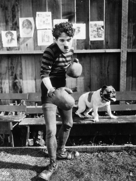 Chaplin2015TheChampion1
